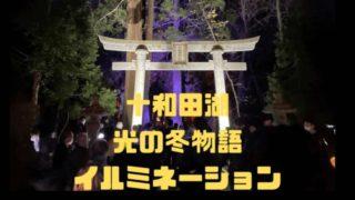 十和田湖イルミネーション光の冬物語